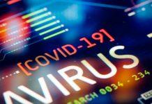 COVID-19 datos actualizados