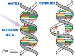 Desinfección sin residuos químicos