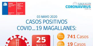 COVID-19 de Magallanes