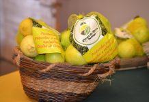 El limón y sus características saludables