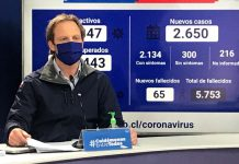 Autoridades de Salud anuncian implementación de cordones sanitarios para Lota y Coronel