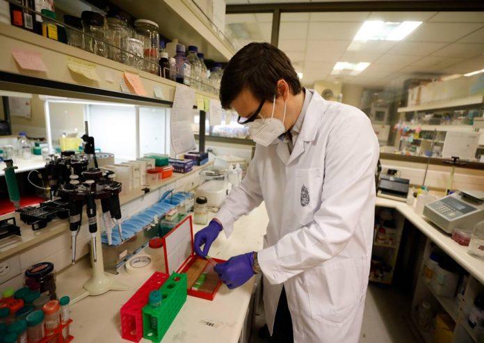 Científicos chilenos establecen relación entreVirus Herpes Simple y Esclerosis Múltiple