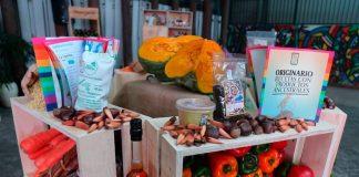 En el Día de la Cocina Chilena, autoridades destacan el aporte de los alimentos ancestrales saludables