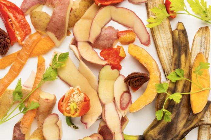 Académicos y estudiantes de la carrera de Nutrición y Dietética UC INVESTIGAN sobre redistribución de excedentes de frutas y hortalizas EN hogares de beneficencia