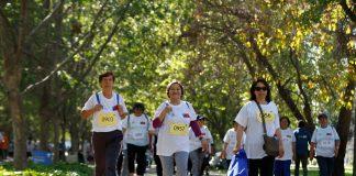 """CARRERAS DE KINESIOLOGÍA Y NUTRICIÓN UC PREPARAN VIRTUALMENTE A ADULTOS MAYORES PARA """"CAMINA60+: LA META ES TU SALUD"""" DEL 2 DE OCTUBRECARRERAS DE KINESIOLOGÍA Y NUTRICIÓN UC PREPARAN VIRTUALMENTE A ADULTOS MAYORES PARA """"CAMINA60+: LA META ES TU SALUD"""" DEL 2 DE OCTUBRE"""