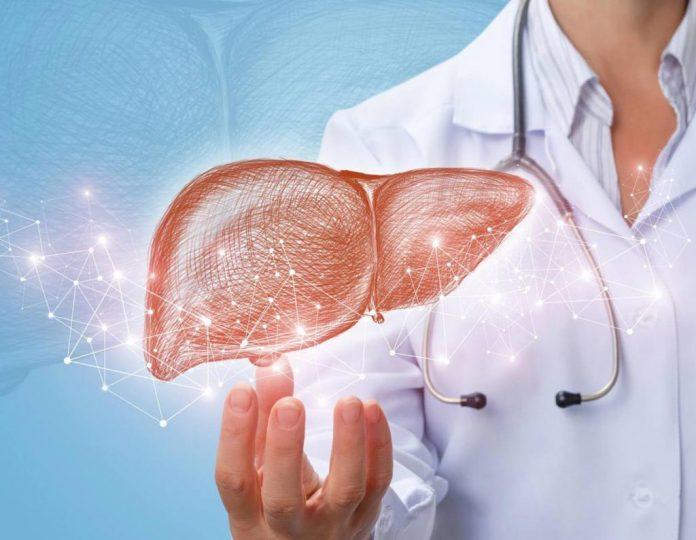 Día del Hígado graso no alcohólico Creciente avance del hígado graso: 30% de los chilenos desarrollarán esta enfermedad por el aumento de la obesidad en la pandemia