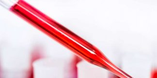 Con inspiración en los percebes, un pegamento médico detiene el sangrado en segundos