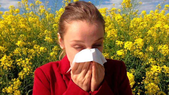 Conoce las novedades que brinda la naturaleza para combatir las alergias